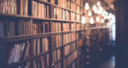 Wdobczyckiej bibliolandii… – bajkowa biblioteka
