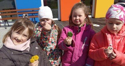 Przedszkolaki zrobiły sałatkę zkwiatów!